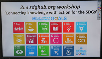 SDG workshop